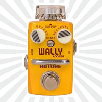 Hotone Wally Looper Review